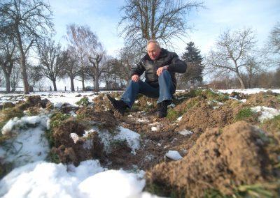 Wildschweinplage im Dresdner Westen, Horst Ringel in seinem Garten,  Sächsische Zeitung 1/2017