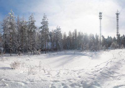 Winter in der Dresdner Heide, Langebrück/Sa.